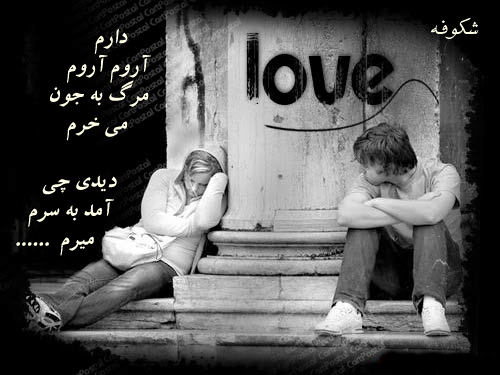 http://erfansher.persiangig.com/image/love.jpg